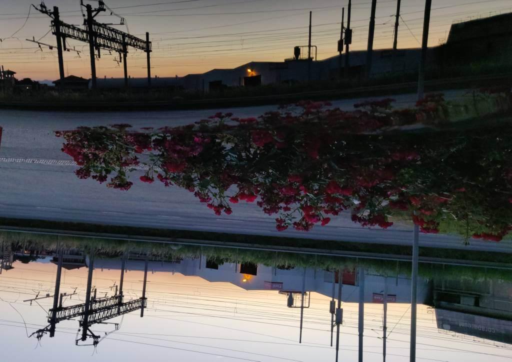 foto sapone per vernice opaca - 1