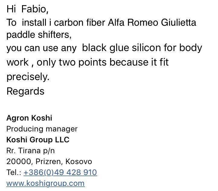 foto Trovati Paddle carbonio per Giulietta TCT - 1