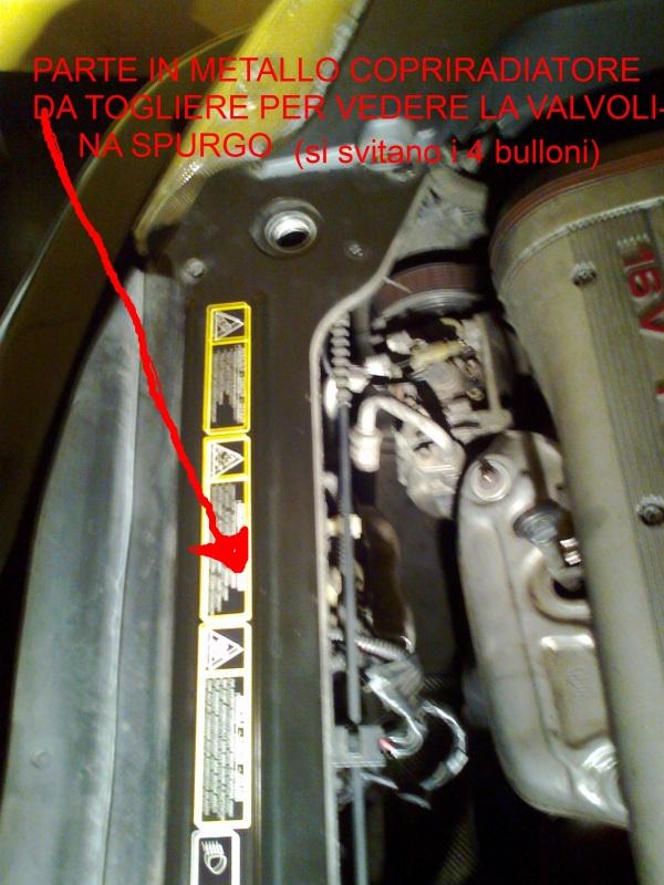 foto Diagnosi problemi termostato/impianto raffreddamento. - {attachcounter}